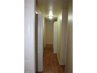 Bellevue Rental Photo 8
